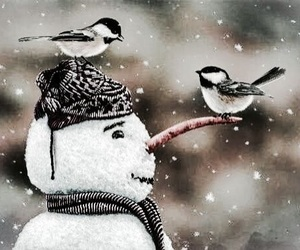 snow, bird, and snowman image