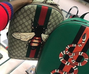 gucci, backpack, and snake image