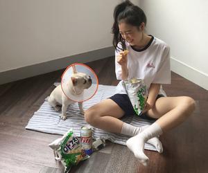 ulzzang, aesthetic, and dog image