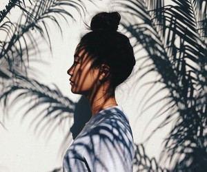 beautiful, inspirational, and palms image
