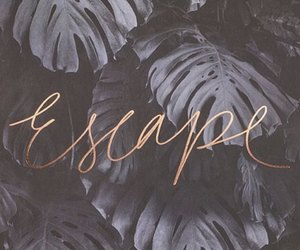 wallpaper, escape, and quotes image
