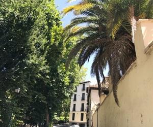 house, palm tree, and spain image