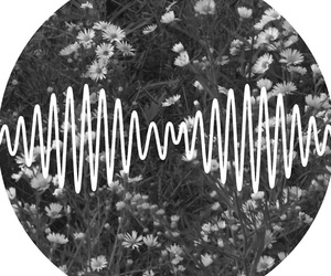 am, arctic monkeys, and music image