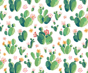 background, succulent, and cacti image