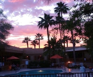 sunset, palms, and pool image