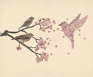 bird, branch, and flowers image