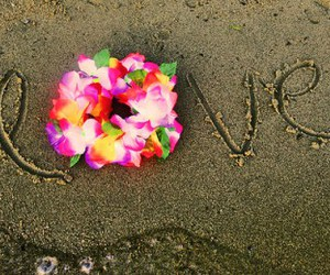 beach, flower, and sand image