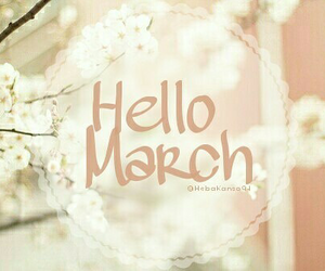 flowers, march, and months image