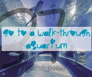 aquarium, before i die, and 1000 things i want image