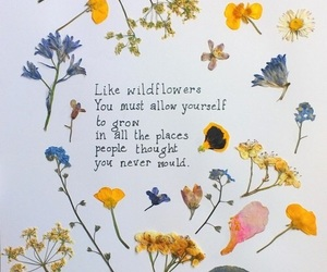 flowers, quotes, and cute image