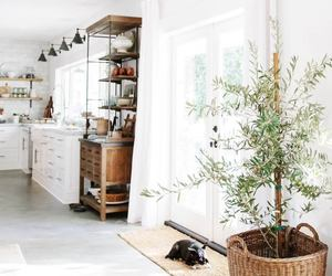 interior, kitchen, and minimal image