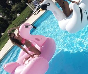 body, flamingo, and friendship image