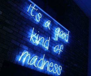quotes, madness, and light image