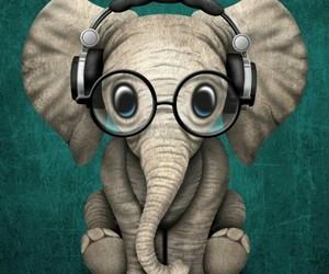 cute, elephant, and animal image