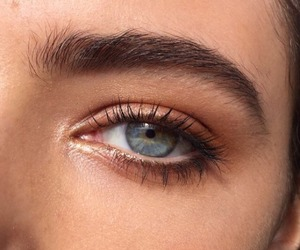 eyes, eye, and eyebrows image