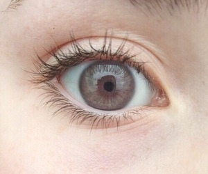eye, brown, and tumblr image
