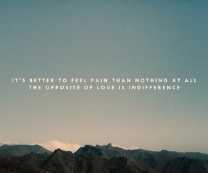 pain, love, and the lumineers image