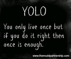 enough, yolo, and live image