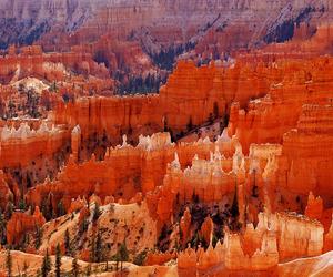 america, canyon, and holiday image