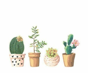 art, cactus, and plants image