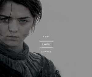 got, arya stark, and game of thrones image