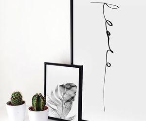 cactus, minimal, and plants image