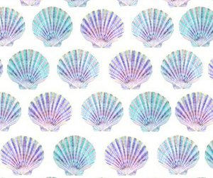 shell, wallpaper, and blue image