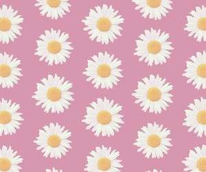 flor, flower, and hipster image
