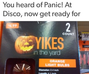 funny and panic! at the disco image