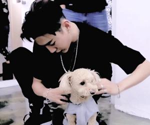 asian boy, dog, and bang yongguk image