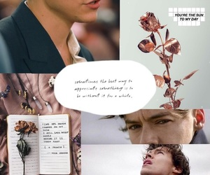 flowers, grunge, and larry image
