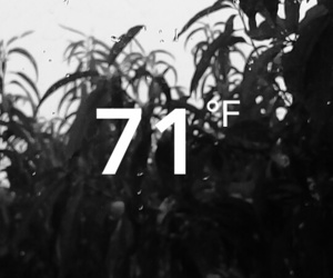 blackandwhite, fahrenheit, and rain image