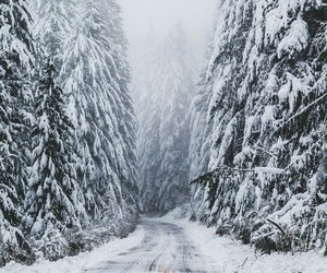 cool, snow, and winter image