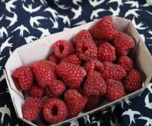 berries, food, and fresh image