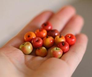 apple, fruit, and mini image