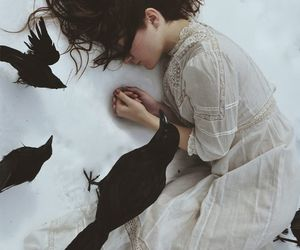 fantasy, photography, and crows image