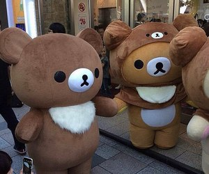 cute, bear, and japan image