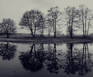 black and white, landscape, and latvia image