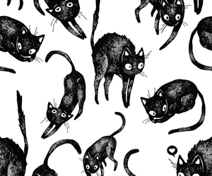 cat, pattern, and wallpaper image