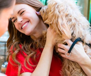 teen wolf, holland roden, and dog image