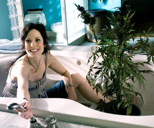 weeds and nancy botwin image