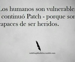 patch, hush hush, and book image