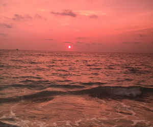 sunset, pink, and sea image