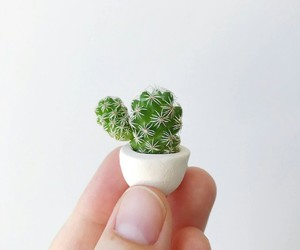 cactus, cute, and green image