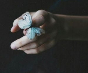 butterfly, hand, and dark image