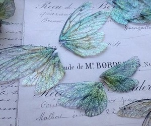 butterfly, wings, and blue image