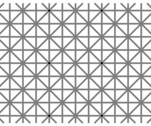 dots, optical illusion, and how many image