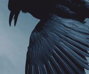 ravenclaw image