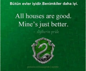 slytherin and hogwarts binaları image