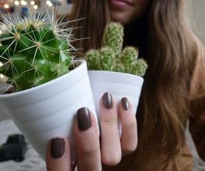 aesthetic, cactus, and aesthetics image
